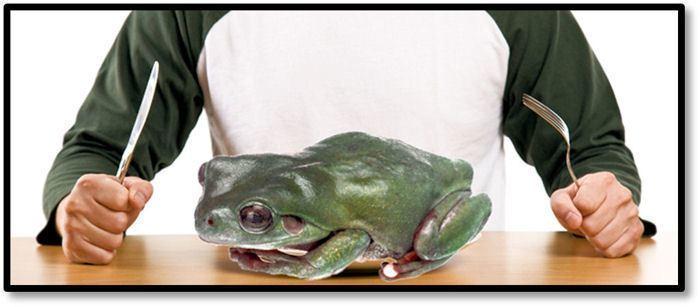 GTD snadno a rychle - frog