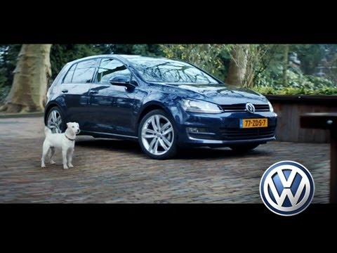 Funny Dog imitates a Golf 7 - Volkswagen [Pub official VW]